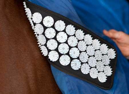 Shoulder acupressure mats